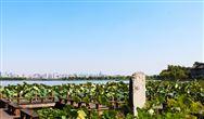 关于工业园区污水处理设施整治 南京开展专项整治行动