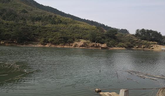 我国城镇水处理与回用领域团体标准正式发布