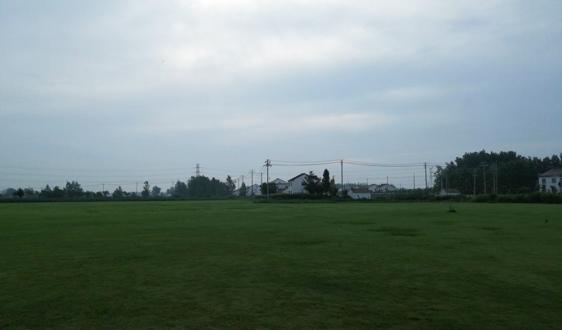 江苏省滨海县滨海港镇坚持绿色发展推动脱贫攻坚