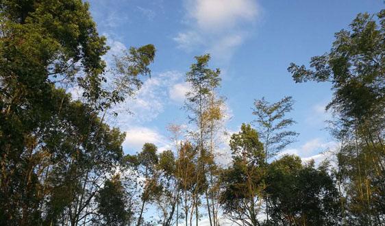 河南:《洛阳市重污染天气应急预案》出炉