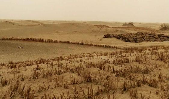 """关于填报""""场地土壤污染成因与治理技术""""重点专项2019年度项目正式申报书的通知"""