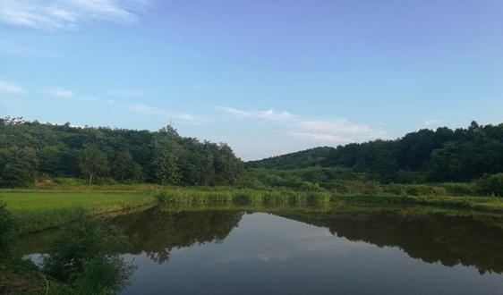 生态环境部征求三项水质检测法国家环境保护标准意见