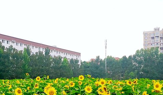 """""""绿水青山就是金山银山""""实践创新基地——湖南省资兴市"""