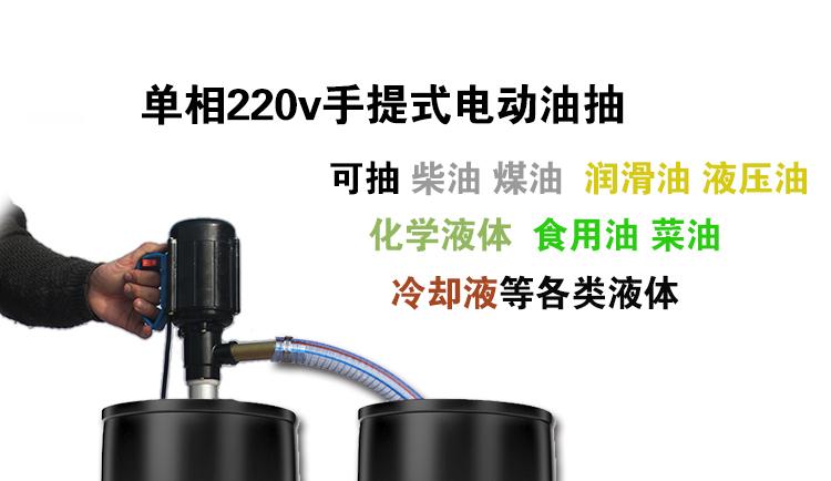 调速电动抽油泵