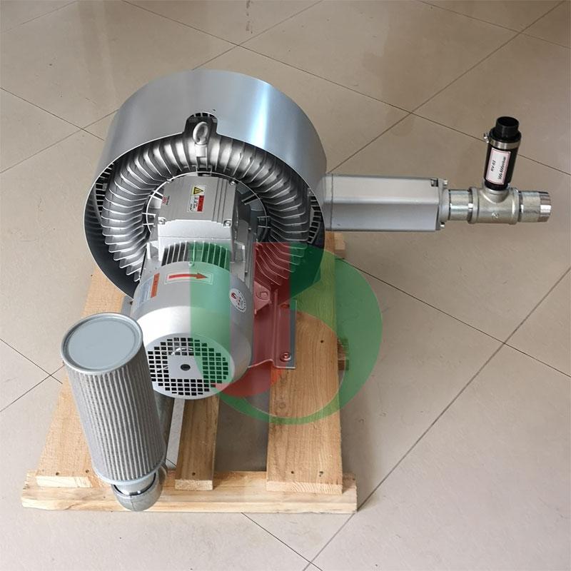 双叶轮漩涡气泵批发