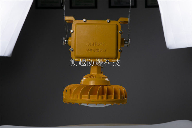 BTC8115A防爆投光灯
