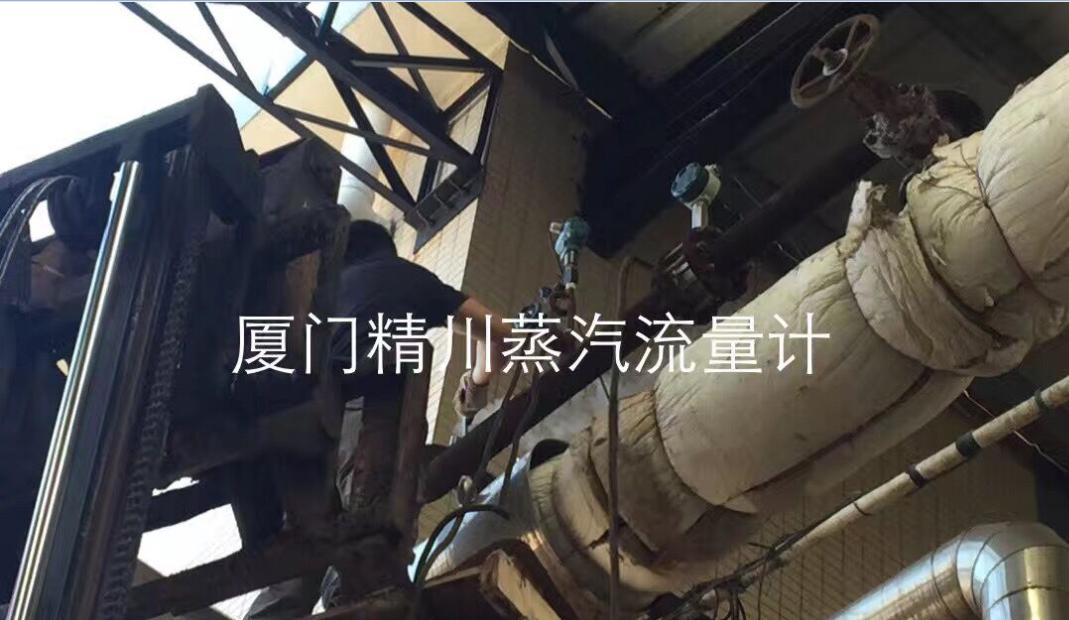 食品厂锅炉蒸汽流量计