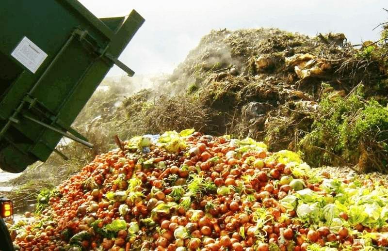 果蔬垃圾处理设备
