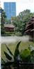 香山公园人造雾工程设备