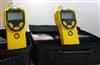 特价现货供应 PGM-7320便携式VOC检测仪